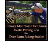 Smoky Mountain Deer Farm Exotic Petting Zoo  logo